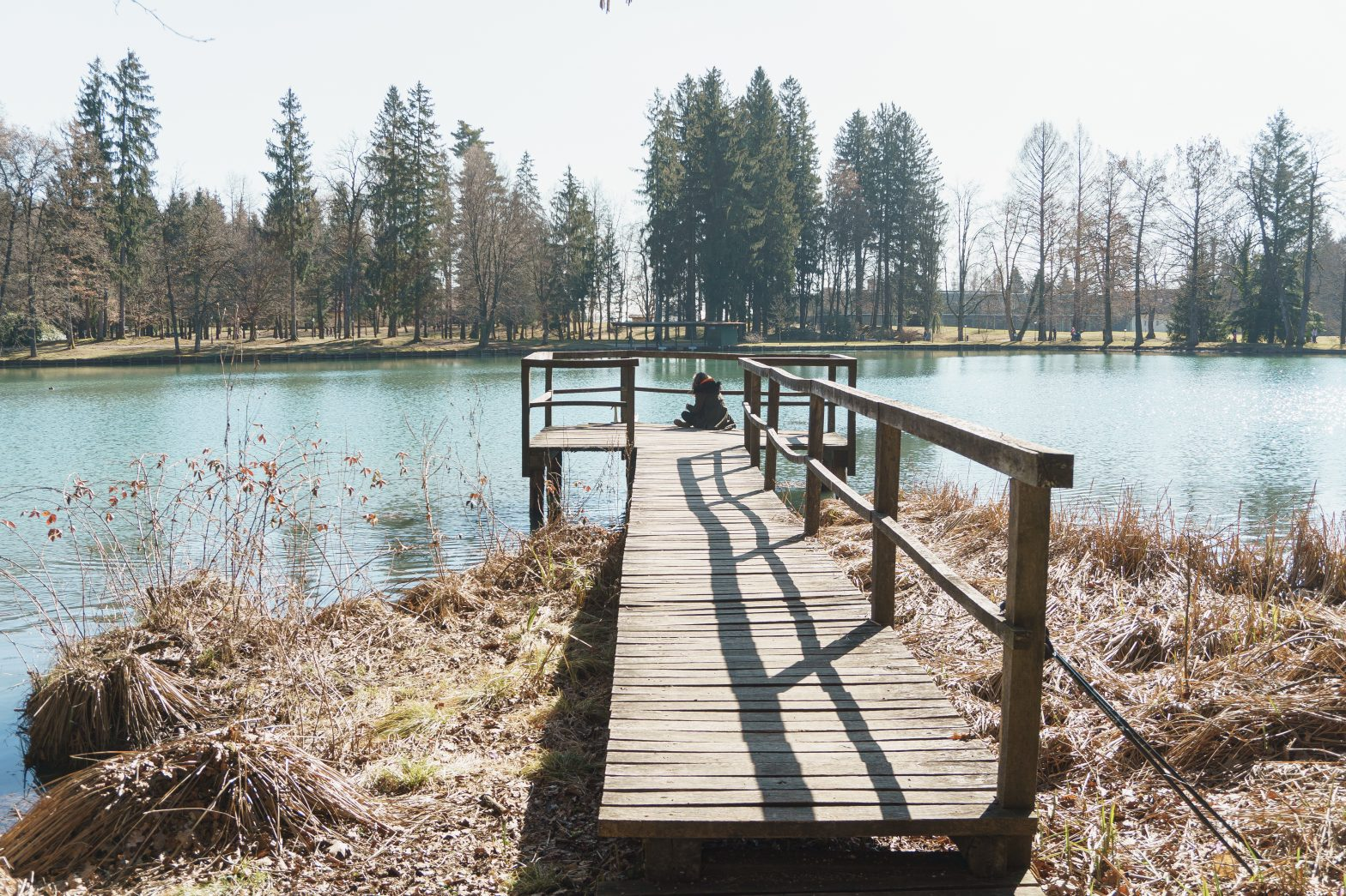 Brdo pri Kranju, photo by: Dusan Smolnikar